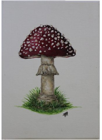 Canvas Painting | Fly Agaric