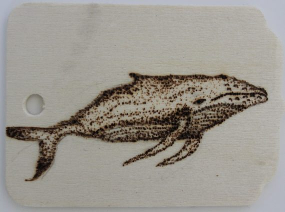 Wood burned magnet with Whale